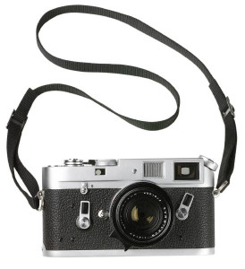 MP900305796