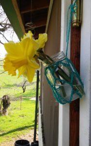 Hanging crochet vase www.lindadeancrochet.com